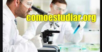 Que hace un ingeniero químico
