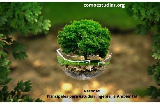 estudiar ingeniería Ambiental