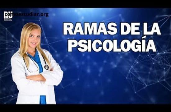 tipos de psicologías y Ramas de la Psicología