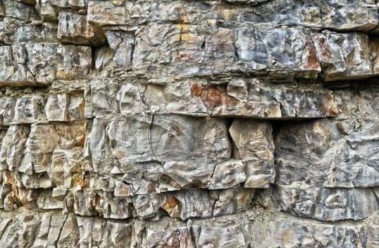 donde estudiar geología en México